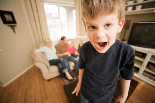 Acorralando al TDAH (trastorno por déficit de atención e hiperactividad)