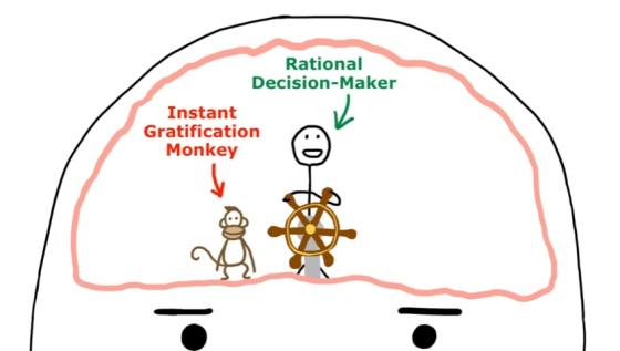La charla TED que te muestra cómo es el cerebro de un procrastinador